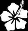 hibiscus-flower-avanabeauty